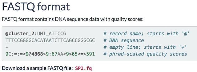1503873393 32 nucleotidos usados para inyectar malware en muestras de adn jugando a ser root con el adn - Nucleótidos usados para inyectar malware en muestras de ADN. Jugando a ser ROOT con el ADN.