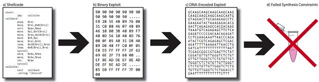 1503873393 9 nucleotidos usados para inyectar malware en muestras de adn jugando a ser root con el adn - Nucleótidos usados para inyectar malware en muestras de ADN. Jugando a ser ROOT con el ADN.
