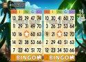 Bingo Adventure - Juego Gratis imagen 4 Thumbnail