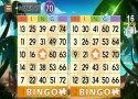 Bingo Adventure - Juego Gratis imagen 5 Thumbnail