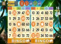 Bingo Adventure - Juego Gratis imagen 7 Thumbnail