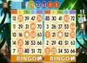 Bingo Adventure - Juego Gratis imagen 8 Thumbnail