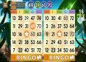 Bingo Adventure - Juego Gratis imagen 6 Thumbnail