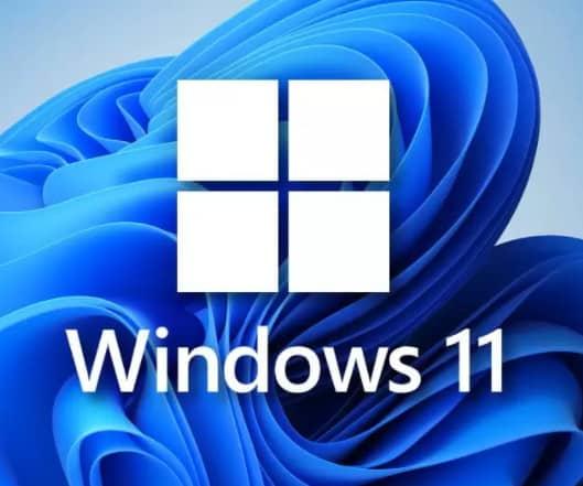 ISO Windows 11 Professional