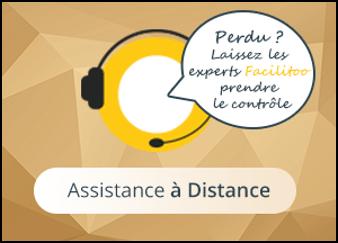 Asssistance et depannage a distance
