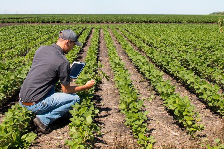Les agriculteurs adeptes de nouvelles technologies… et de YouTube! Ailleurs sur le Web, Actualité