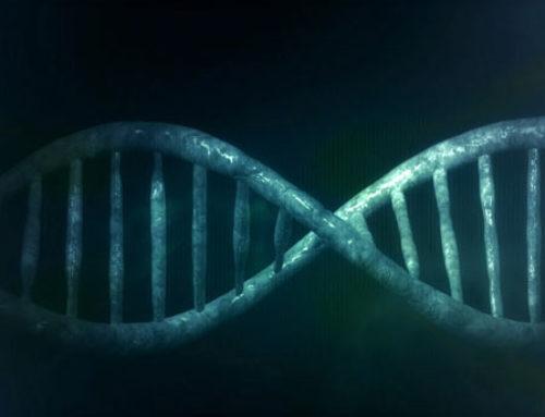 Microsoft stocke de la donnée dans de l'ADN