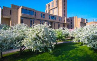Comment une université équipe trois campus (900.000 m²) avec du Wi-Fi Gigabit