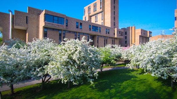 Comment une université équipe trois campus (900.000 m²) avec du Wi-Fi Gigabit Wi-Fi, Réseau sans-fil, Mobilité