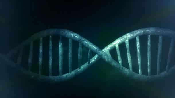 des biohackers encodent un malware dans un brin dadn - Des biohackers encodent un malware dans un brin d'ADN