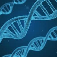 Le chiffrement du génome pourrait permettre de sécuriser vos données ADN